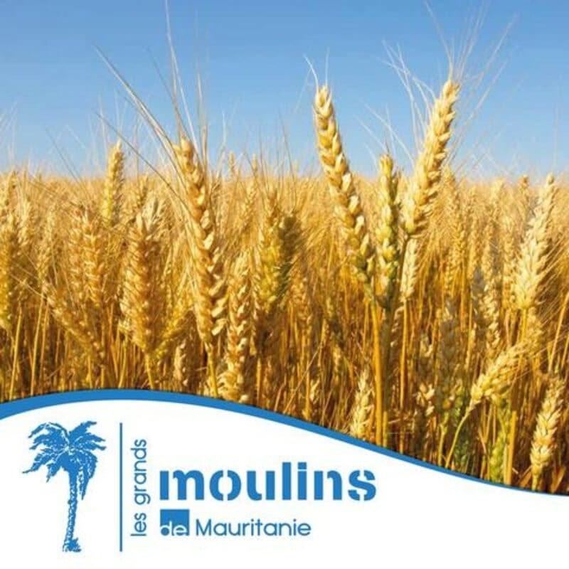 Négoce de matières premières Grands Moulins de Mauritanie